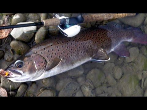 осень ленок рыбалка