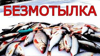 БЕЗМОТЫЛКА Плотва на КУБИК ПЕРВЫЙ ЛЁД или ПОСЛЕДНИЙ МЕНЯЙ ИГРУ И ЛОВИ Зимняя рыбалка 2021