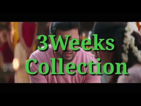 Bheeshma 21days Boxoffice Collection Bheeshma 3weeks Boxoffice Collection Youtube
