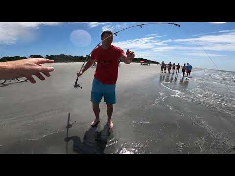 Man Shark Fishing On South Beach Hilton Head Surprised By Unexpected Catch!