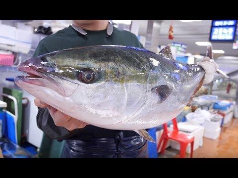 [4K]12kg 대방어 회뜨기,이케시메,부위별 해체 _ Yellowtail Amberjack Cutting, Sashimi_Korean Street Food