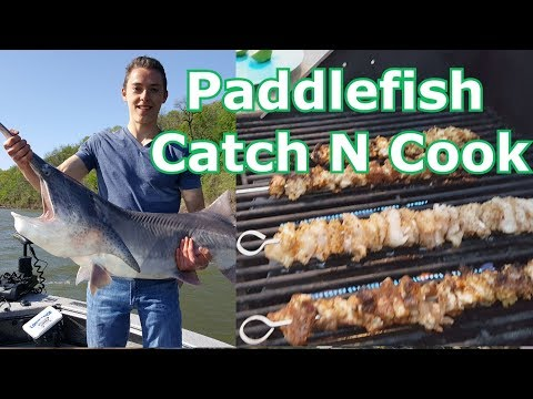 Catch And Cook Paddlefish (Spoonbill) - How To- Amazing Taste