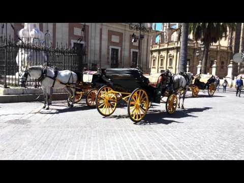 Travel with me: Sevilla ♡