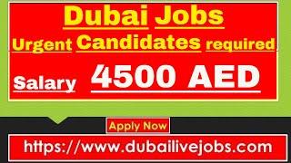 Dubai Latest Jobs 2019 | Dubai Companies Need Many Candidates on Urgent Basis || Jobs in Dubai Video