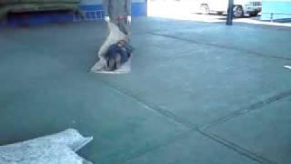 Rescate: Extraccion, levantamiento, arrastres y traslados de lesionados de zonas peligrosas Parte 02
