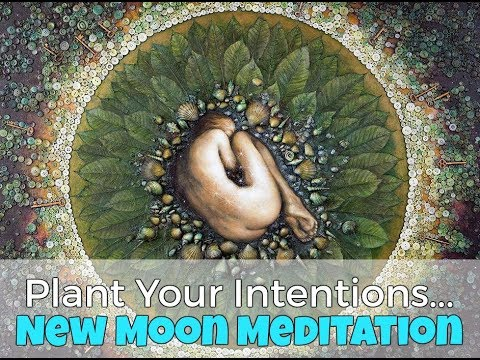 NEW MOON MEDITATION - Plant Your Seed Intentions!
