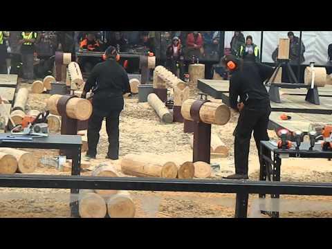 Logger Skills Mystery Creek 2013 Hotsaw