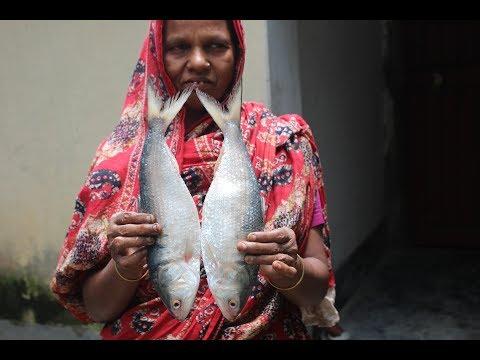 Village Food | Delicious Sorse hilsa recipe | Grandmother recipes-109