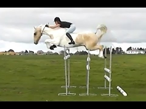 """Free Riding"" Jumping huge bareback"