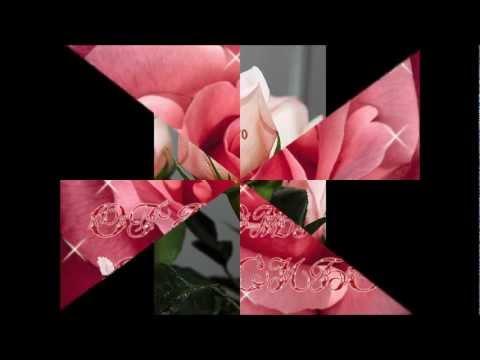 Розы фото. Кустовые розы.