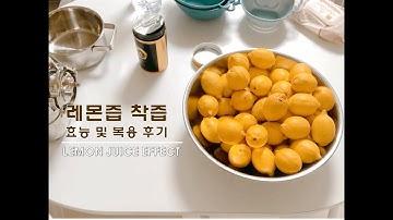 VLOGㅣ레몬 8KG 착즙 영상🍋🍋(Feat 엔젤녹즙기) 레몬즙효능, 레몬즙복용후기, 레몬세척방법, 레몬즙 착즙하기, 레몬 착즙기 추천, 질병별 레몬즙 처방