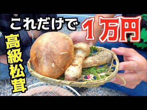 国産高級松茸を七輪で焼いて食べてみた!