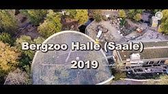 Bergzoo Halle 2019 // Zoo Halle