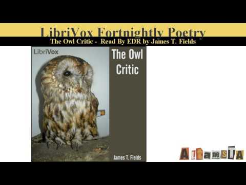 The Owl Critic