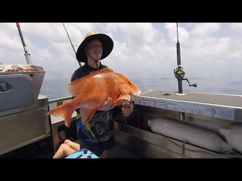 Yeppoon Offshore Fishing - Red Fish, Red Throat Emperor, Grassy Sweetlip And More!
