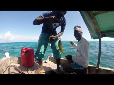 Zanzibar: Chumbe Island, Jambiani, Stone Town, The Rock & Matemwe (GoPro Hero 3+)