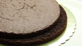 Easy Chocolate Sponge Cake Recipe