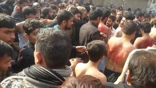 28 safar wapsi taboot e imam hassan imamia colony lahore 2016