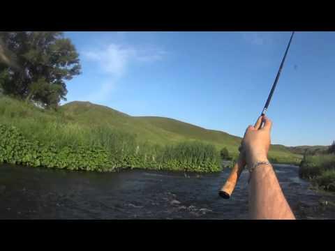 рыбалка летом на урале