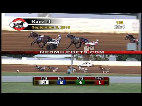 Red Mile Racetrack Race 4 9-3-2016