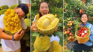 Awesome Fruit Ideas | Amazing Fruits Cutting Skills