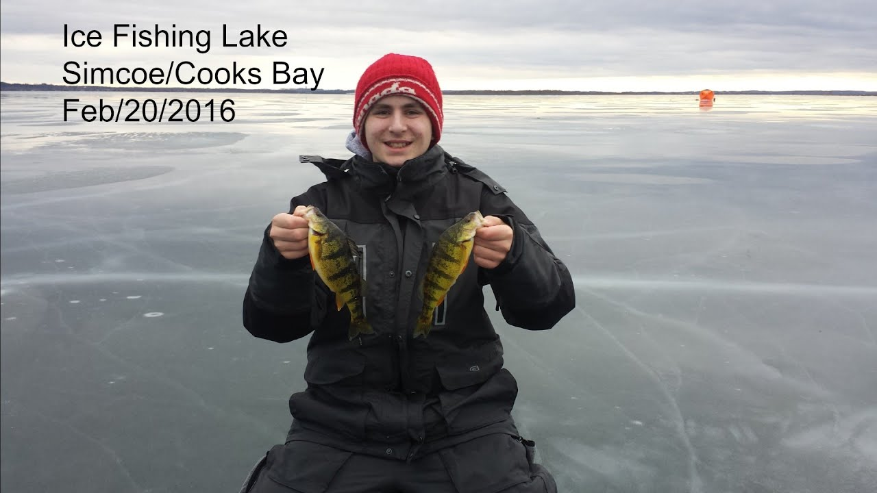 ice fishing lake simcoe cooks bay feb 20 2016 youtube