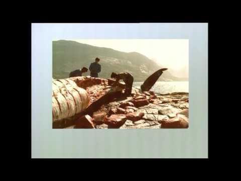 Kalaallit arfanniat, KNR 2006