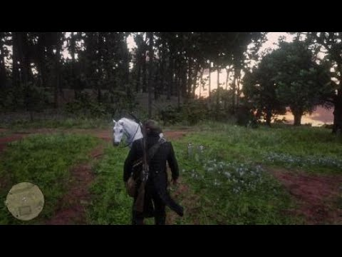 Red Dead Redemption 2 - Catfish Jackson Home Robbery