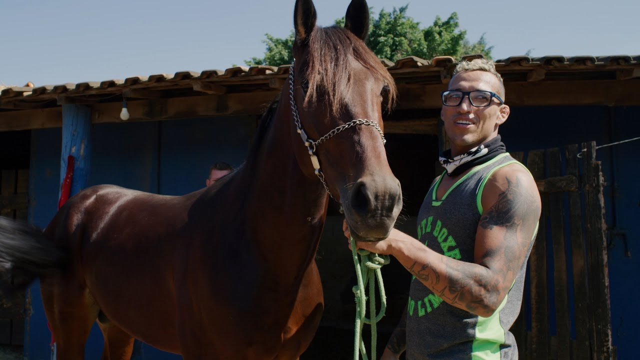 Charles Oliveira and His Passion for Harness Racing