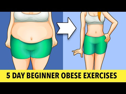 5-Day Beginner Obese Exercises For Weight Loss