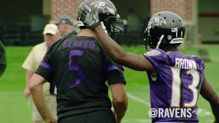 OTA Highlights: Smokey Brown Hauls in an Absolute Bomb From Joe Flacco