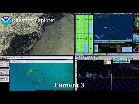 Okeanos Explorer - Camera 3