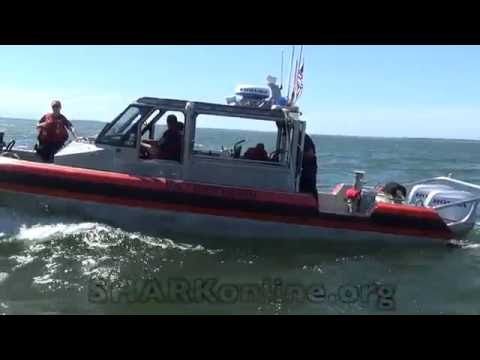 SHARK versus US Coast Guard - who will blink?