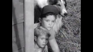 "Lassie - Episode #165 - ""Beholden"" - Season 5, Ep. 22 - 02/01/1959"