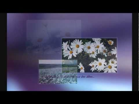 Sự tích hoa cúc trắng - Legend of the White Daisy