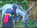 Hmong new movie - Nkauj Mim See Txoj Kev Ua Ntsuag Nyob Ntiaj Teb No Part 1.2