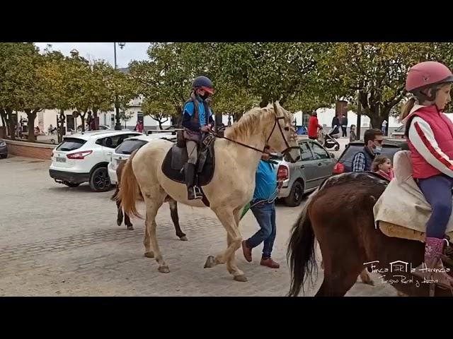 Paseo a caballo por el Día de Andalucía