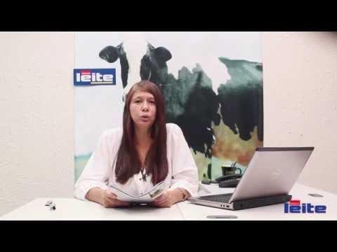 Mundo do leite: Procuram-se produtores