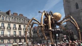 L'araignée des machines de l'ile