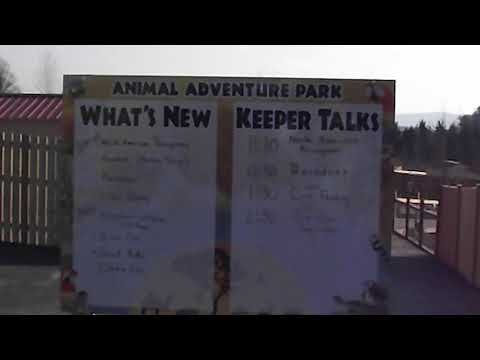 whats new at animal adventure park?