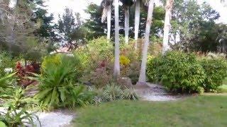 palma sola botanical park bradenton fl