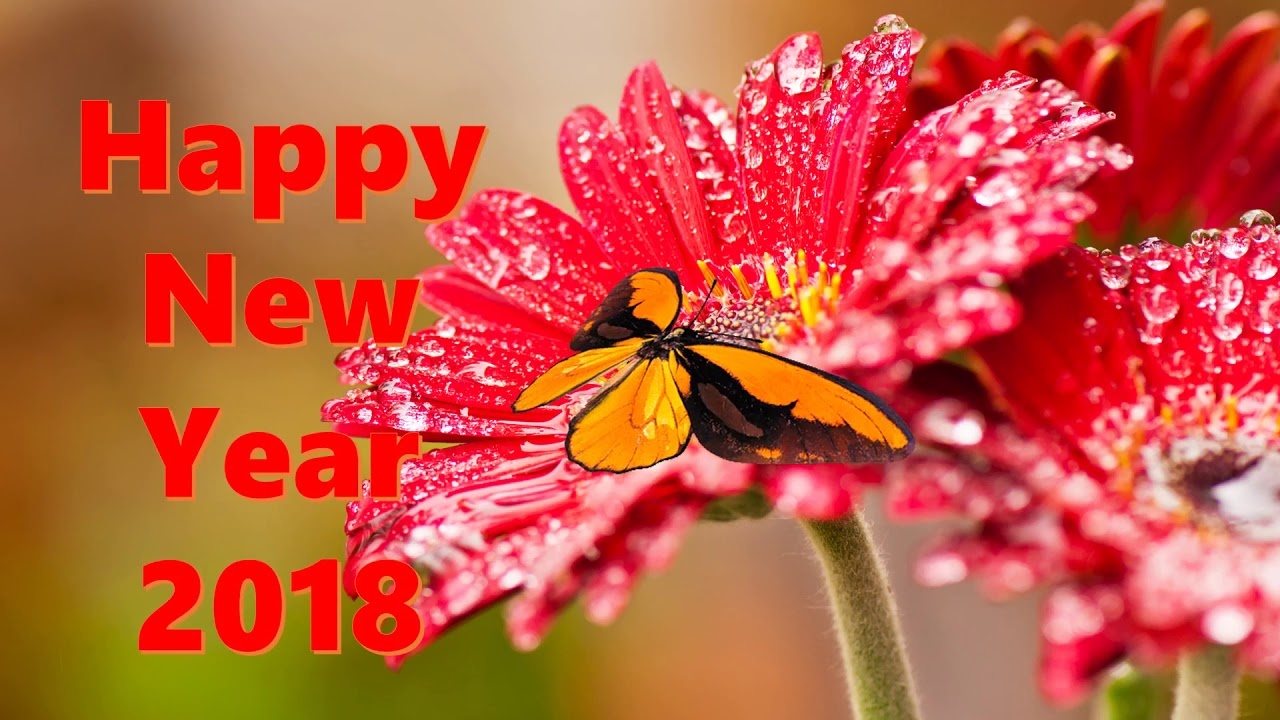 Happy New Year 2018, Wishes, video download,Whatsapp Video ...