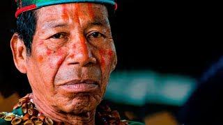 Amazonía en riesgo | El Espectador