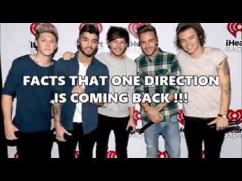 One Direction Reunion (Fact That One Direction Is Coming Back)