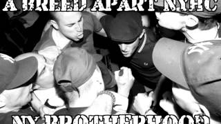A BREED APART NYHC