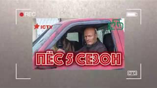 Сериал Пёс 5 сезон 1 серия (Смотреть все серии онлайн