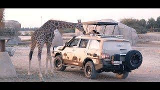 Al Ain Safari, your ticket to Africa!  |  سفاري العين، تذكرتك إلى أفريقيا!