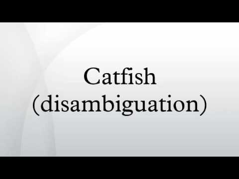 Catfish (disambiguation)