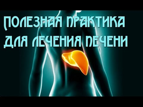 УЗИ печени, желчного пузыря и поджелудочной железы