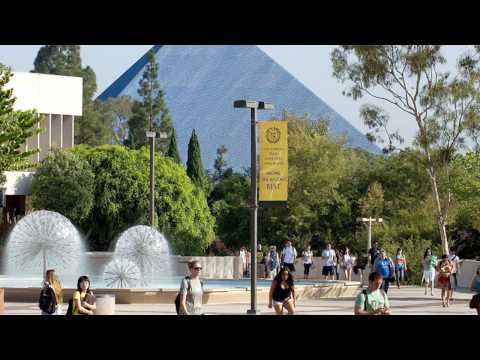 California State University Long Beach - 5 Things I Wish I Had Known Before Attending